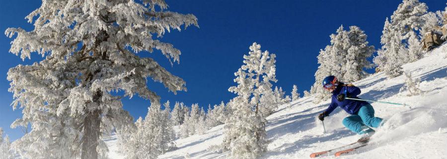Ski Industry: multicultural audiences