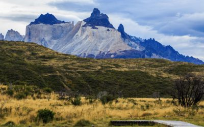 60th Anniversary: Torres del Paine